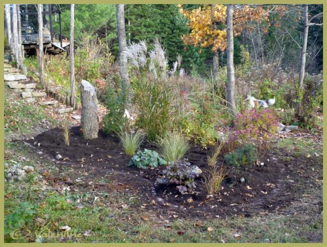 Afficher le sujet saison 2010 du jardin for Baraque jardin