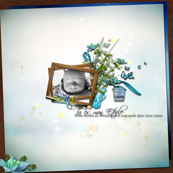 http://i25.servimg.com/u/f25/11/25/70/70/louve110.jpg
