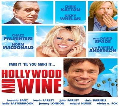 بإنفراد - فيلم Hollywood and Wine 2010 مترجم DVDRip دي في دي