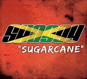 Saggy - Sugar Cane
