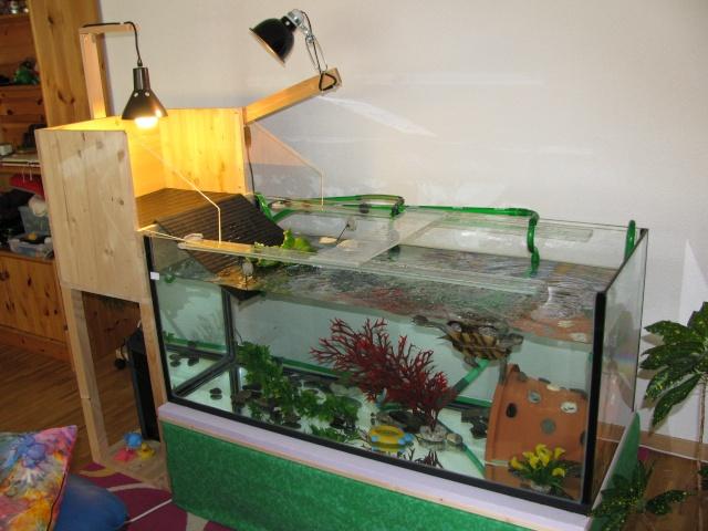 mon aquarium avec plage de ponte. Black Bedroom Furniture Sets. Home Design Ideas