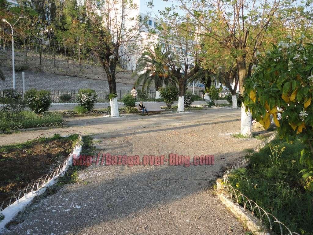 http://i25.servimg.com/u/f25/12/45/87/06/jardin11.jpg
