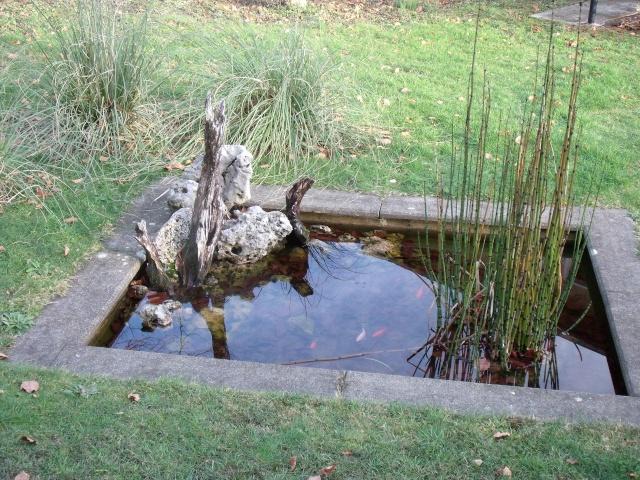 Construction d 39 un bassin d 39 environ 16000l - Profondeur d un bassin de jardin ...