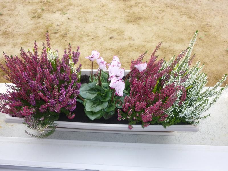Faire une jardini re d 39 hiver for Jardiniere d hiver