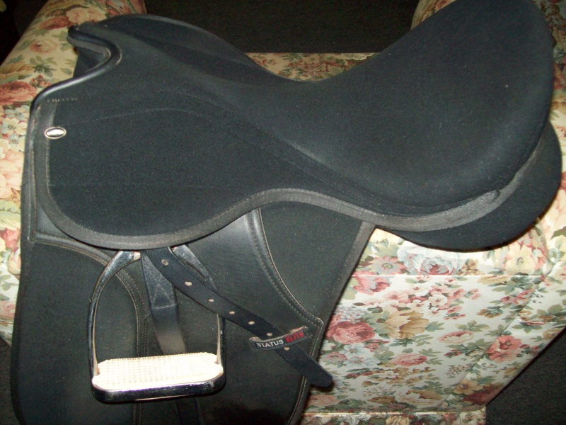 Status dressage 17.5 inch, good condition, $120. Kincade 30 inch girth, anti-gall, no elastic, excellent condition, $30. Both saddle & girth too big for my