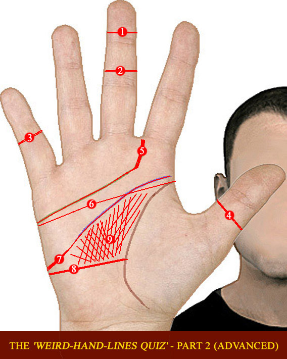 The 'Weird-Hand-Lines Quiz'!