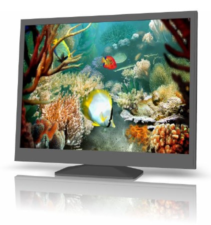 Tropical Fish 3D Screensaver v1.1 Build 6.9