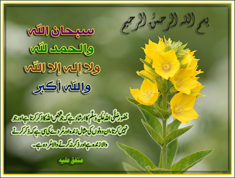 Related Pictures urdu hadees funny poetry nabvi question sms