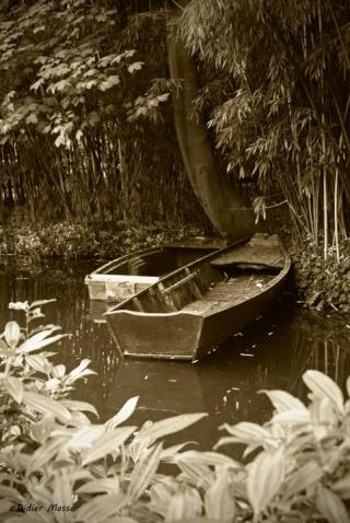 J'ai rêvé d'un étang. dans POESIES, TEXTES 25406910