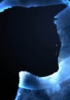 Pelage Nocturne