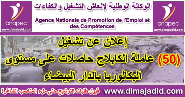 الوكالة الوطنية لإنعاش التشغيل والكفاءات: توظيف 50 عاملة الكابلاج حاصلات على مستوى البكالوريا بالدار البيضاء